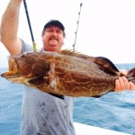 11:22:14 black grouper