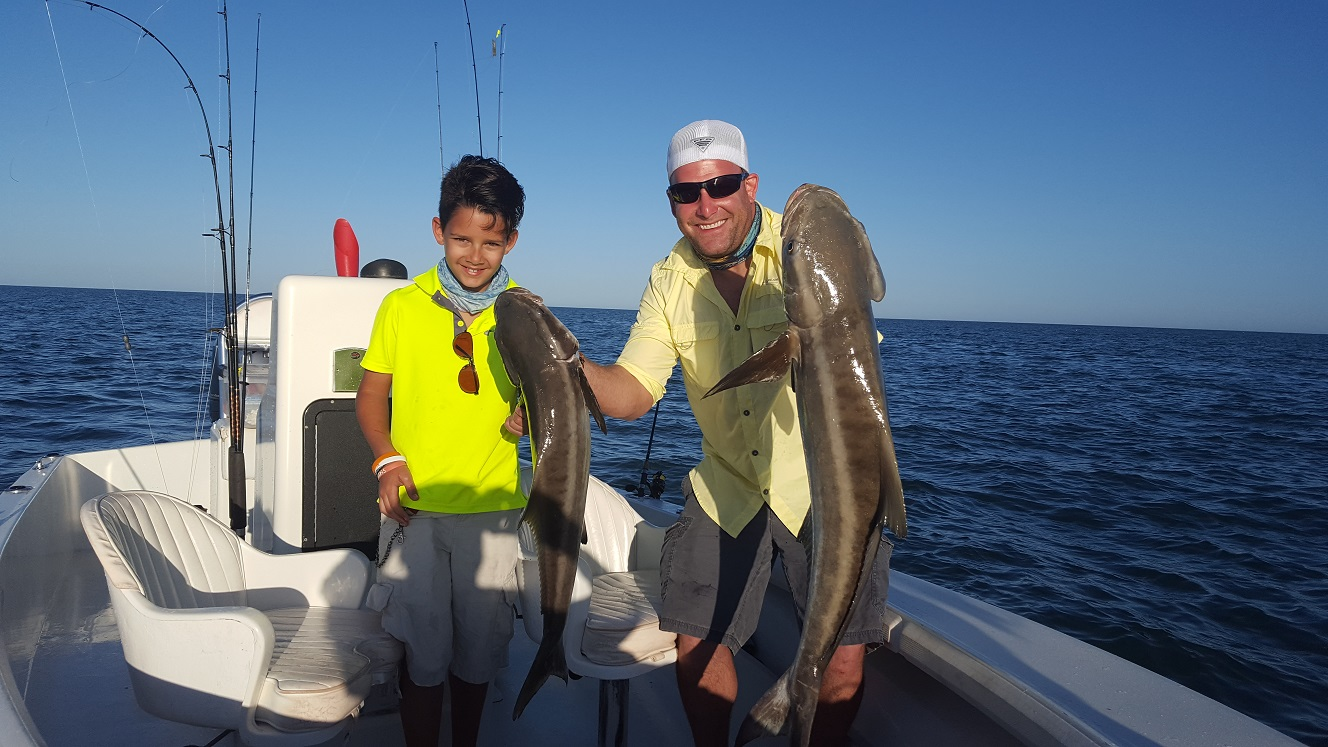 122916cobia fishing islamorada for Islamorada florida fishing