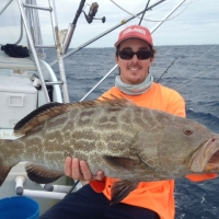 islamorada black grouper