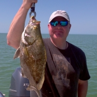 march tripletail