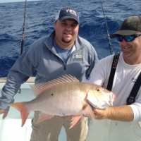 islamorada mutton snapper