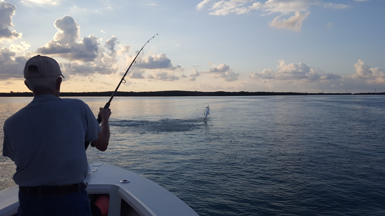 31217tarpon fishing islamorada for Islamorada fishing report