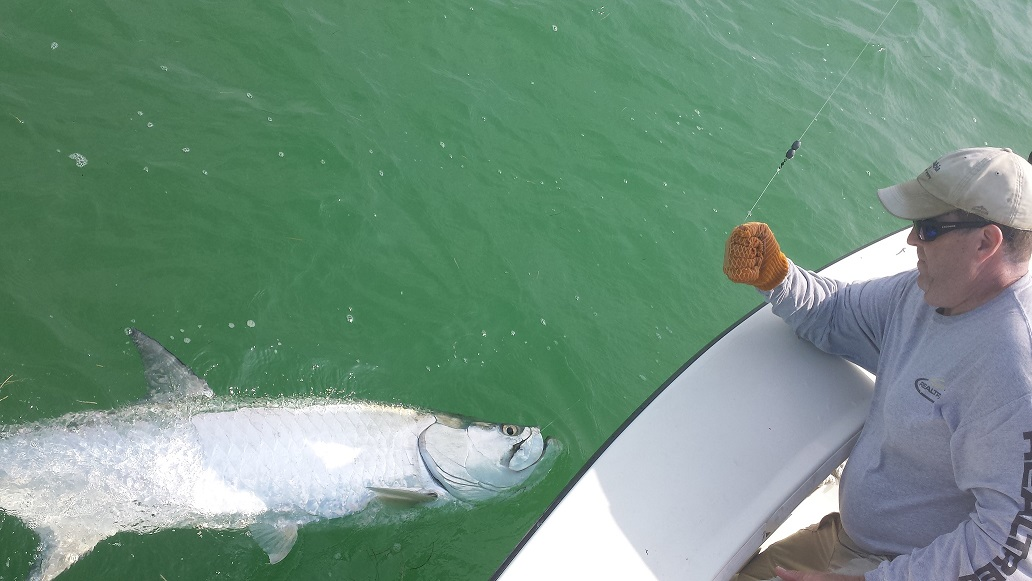 32014tarpon fishing islamorada for Islamorada tarpon fishing